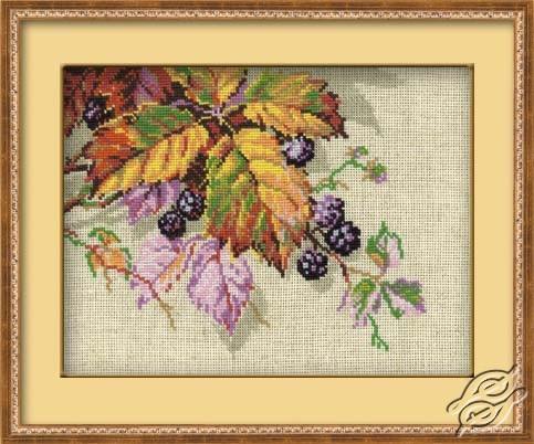 Blackberry by RIOLIS - 990