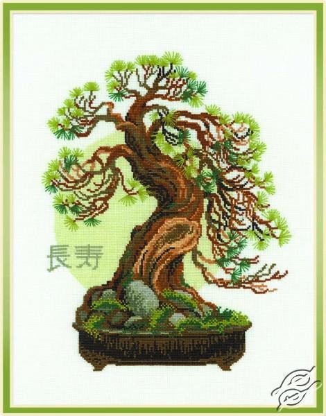 Bonsai II by RIOLIS - 1037
