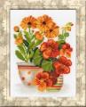 Nasturtiums And Marigolds by RIOLIS - 1116