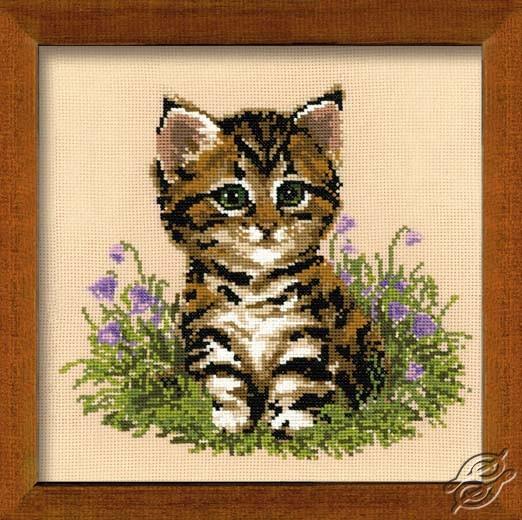 Cat Putzi by RIOLIS - 933
