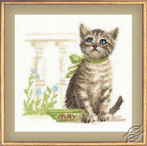 Cat Olga by RIOLIS - 980