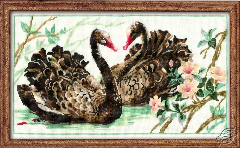 Black Swans by RIOLIS - 806