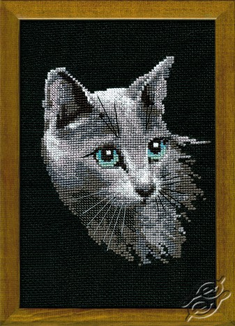 Grey Cat by RIOLIS - 764