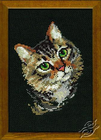 Varicoloured Cat by RIOLIS - 766
