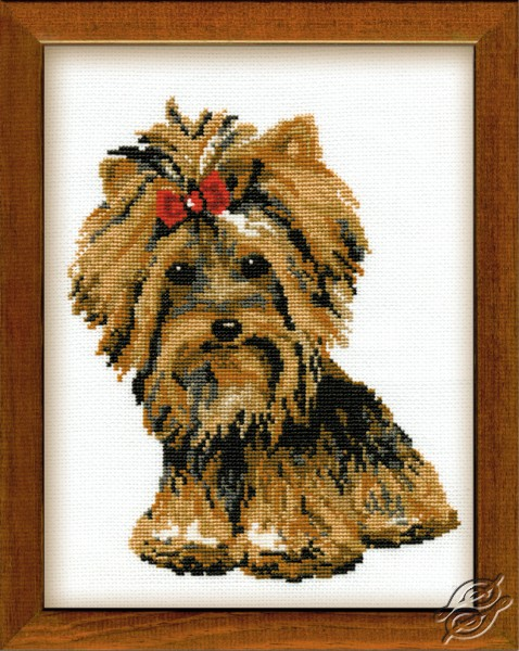 Yorkshire Terrier by RIOLIS - 825