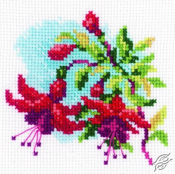 Fuchsia I by RTO - H174
