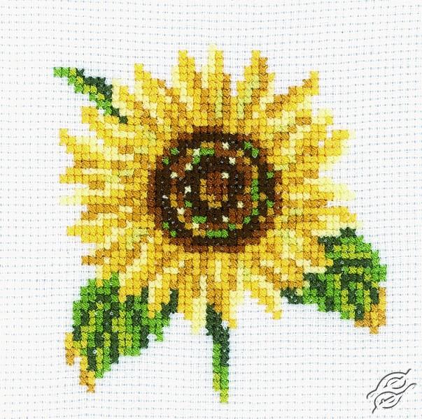 Sunflower I by RTO - H170