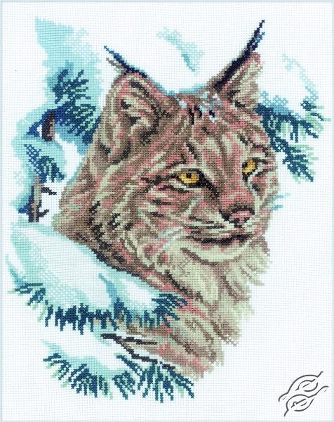 Lynx by RTO - M067
