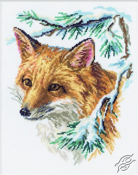 Fox by RTO - M068