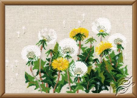 Dandelions by RIOLIS - 807