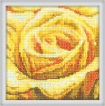 The Yellow rose by RTO - C071
