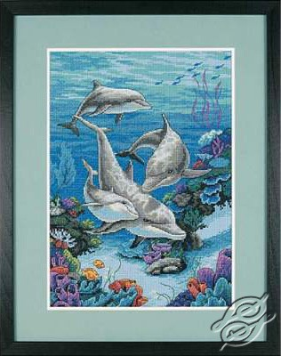 The Dolphins' Domain by Dimensions - 03830