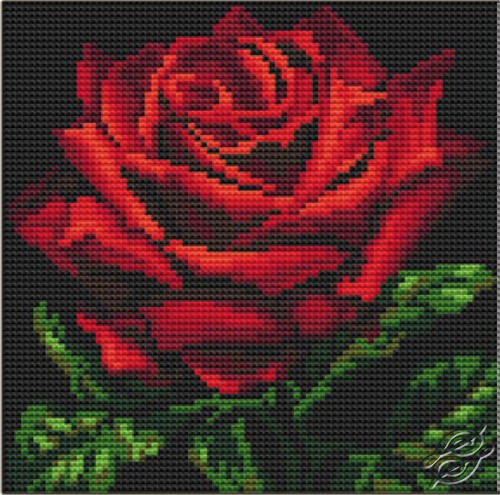 Cushion With Red Rose by Collection D'Art - 5104