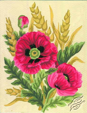 3.116 Poppies by Collection D'Art - 3116