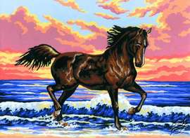 6.031 Caracoling Stallion On A Seaside by Collection D'Art - 6031