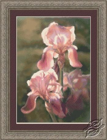 Sunlit Irises by Kustom Krafts - 73073