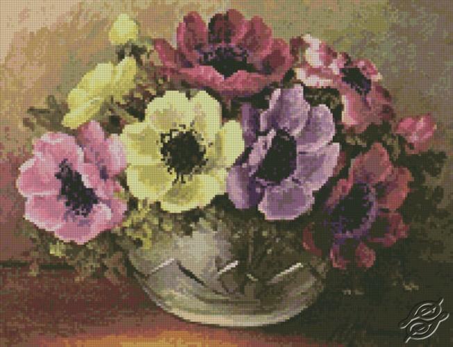 Anemones by Free Cross Stitch Online - GSF00026