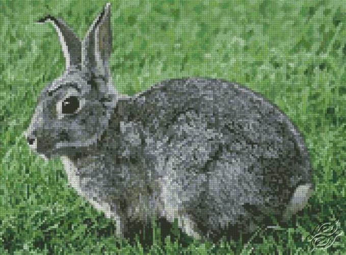 Rabbit by Free Cross Stitch Online - GSF00042