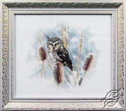 Owl by Alisena - 995