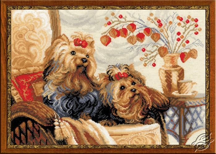 Pets by RIOLIS - 1248