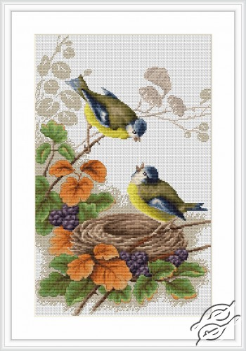 Birds in nest by Luca-S - B215