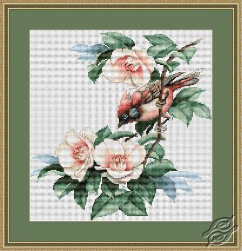 Bird in Flowers by Luca-S - B299