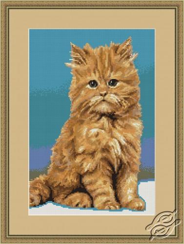 Kitten by Luca-S - B332