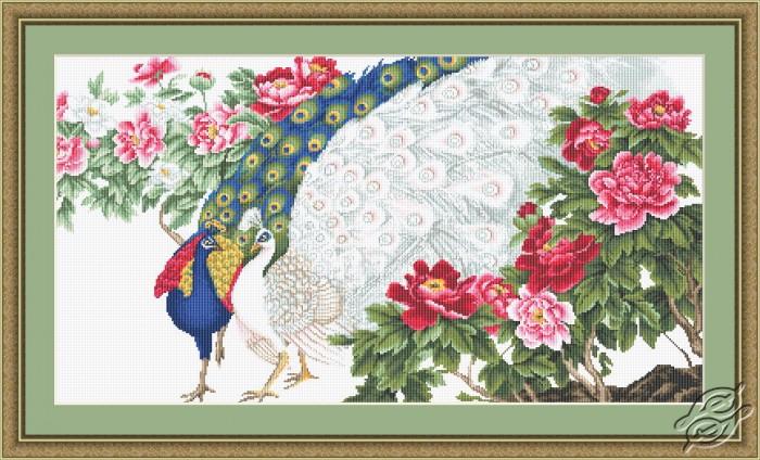 Peacocks in Flowers by Luca-S - B462