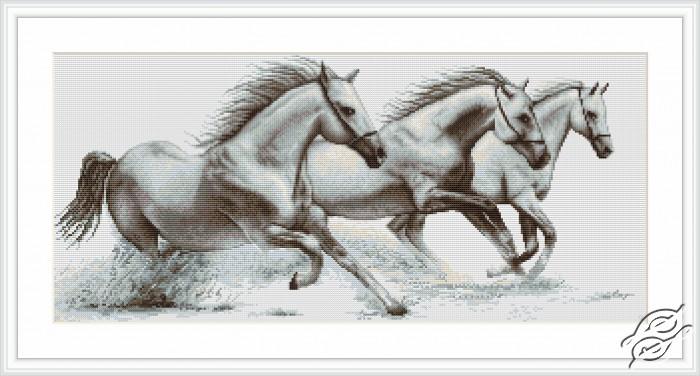 White Horses by Luca-S - B495