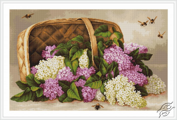 Basket of Lilacs by Luca-S - B501