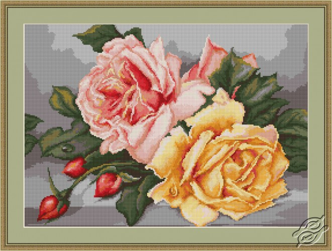 Roses by Luca-S - B485