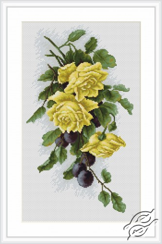 Yellow Roses With Plums by Luca-S - B2230