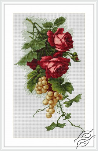 Red Roses and Grapes by Luca-S - B2229