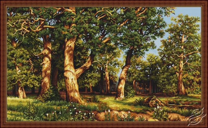 The Oak Grove by Luca-S - B476