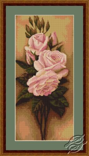 Ikebana from Roses by Luca-S - G455