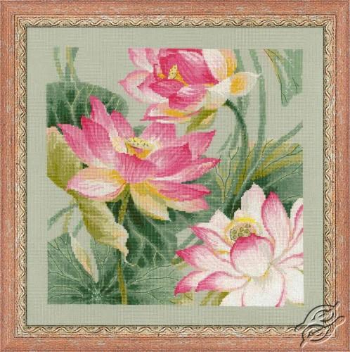 Lotuses by RIOLIS - 1309