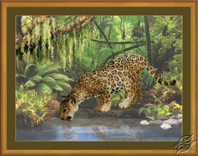 Leopard Near the Water by RIOLIS - 0023-PT