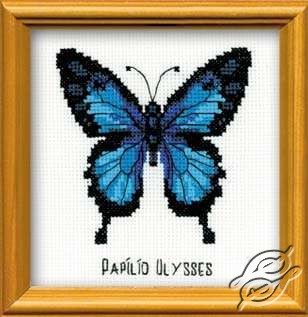 Ulysses Butterfly by RIOLIS - HB095