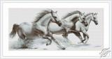 White Horses by Luca-S - G495