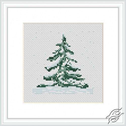 Fir-tree by Luca-S - B012