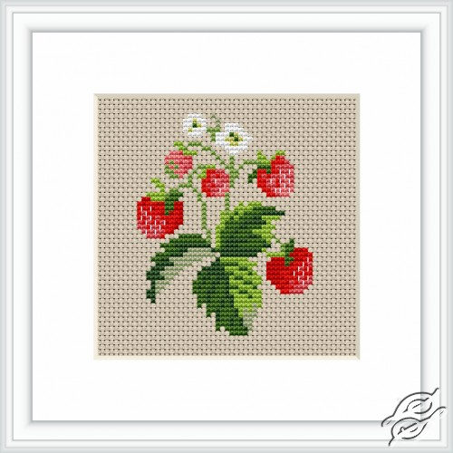Strawberries by Luca-S - B015