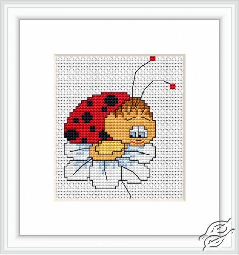 Ladybird III by Luca-S - B064