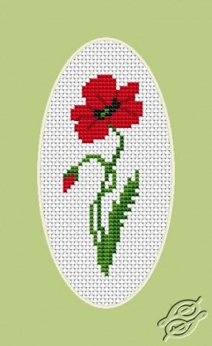 Poppy by Luca-S - B1061