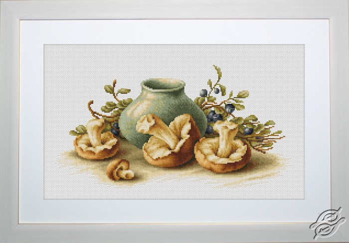 Still Life With Mushrooms by Luca-S - B2247