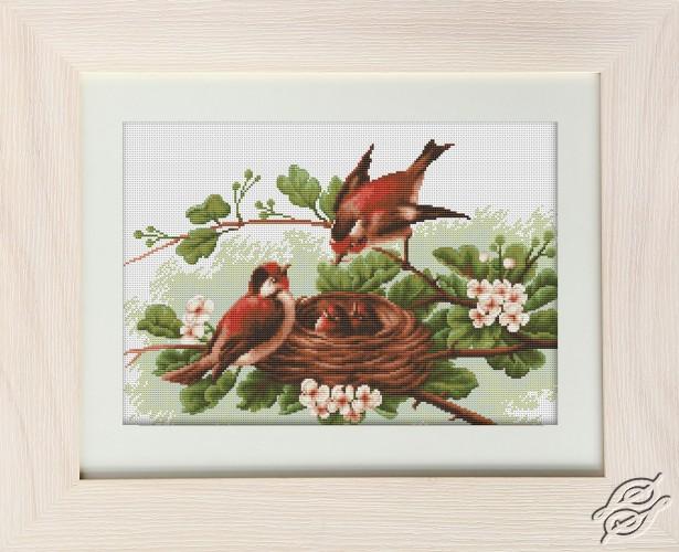 Nest by Luca-S - BM3005