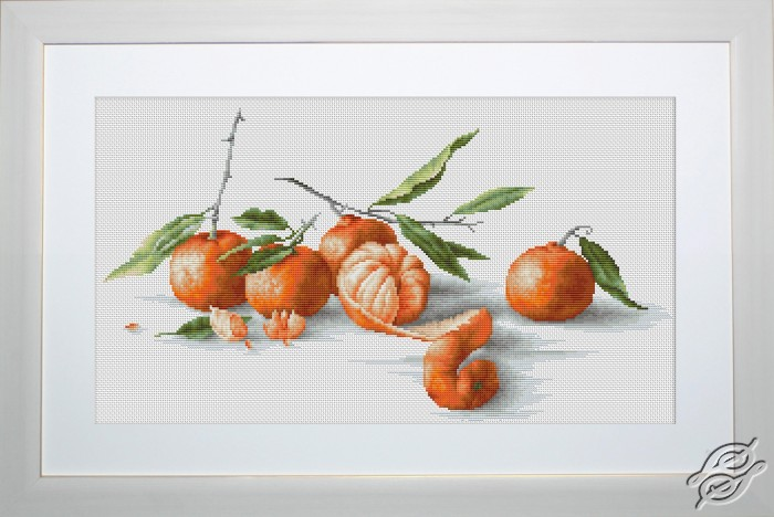 Tangerines by Luca-S - B2255