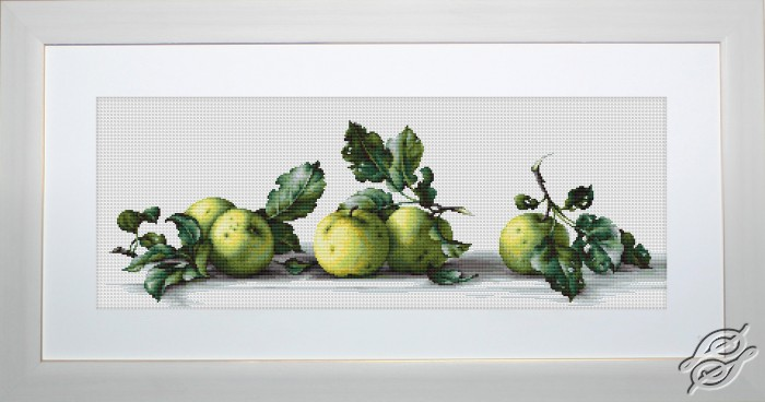 Still Life With Apples by Luca-S - B2259