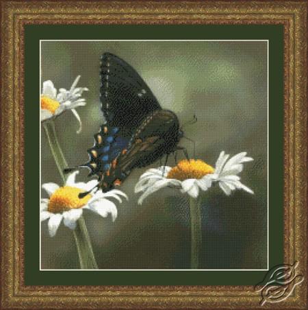 Swallowtail Butterfly by Kustom Krafts - 73093