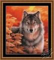 Gaze- Grey Wolf at Sunset by Kustom Krafts - 99423