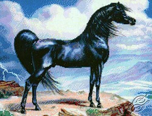 Black Stallion II by Kustom Krafts - SLO-008